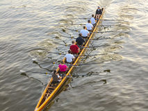 Ruderer, die auf dem Fluss ausbilden Stockbilder