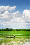 Ruderer im vietnamesischen konischen Hut unter grünen Reisfeldern Lizenzfreie Stockfotografie