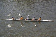 Rudern auf dem Yarra Fluss Stockfotos