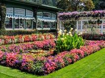 Rudern Sie Kasten Blumen im Gras, indem Sie errichten stockfotografie
