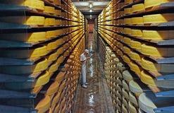 Rudern Sie nach der Reihe des Käses überlassen, um in einem Keller zu reifen Lizenzfreies Stockfoto