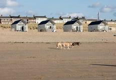 Rudern Sie weiße Strandhäuser an der niederländischen Küste in Katwijk, die Niederlande stockbilder