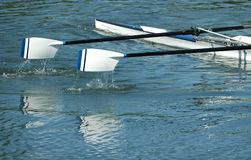 Rudersport Lizenzfreies Stockbild