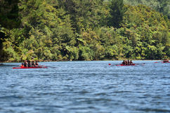 Rudersport-Boote Stockfotos
