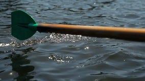 Rudersportruder im Wasser stock video