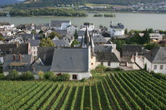 Rudesheim. Vineyards and town center of Rudesheim, Germany Stock Images