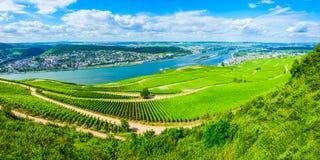 Free Rudesheim Am Rhein Vineyards, Germany Royalty Free Stock Photography - 143187887