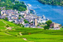 Free Rudesheim Am Rhein Vineyards, Germany Stock Photography - 186516692