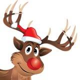 Rudolf ο τάρανδος με την κόκκινα μύτη και το καπέλο Στοκ φωτογραφία με δικαίωμα ελεύθερης χρήσης