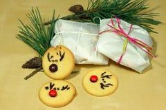 Rudolf Cookies για τα Χριστούγεννα Στοκ Εικόνες