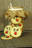 Rudolf Cookies for Christmas Stock Photography