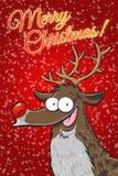 Rudolph - Buon Natale! (Inglese) Immagine Stock Libera da Diritti