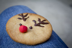 Rudolph Cookie Stock Images