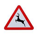 Rudolph Crossing Royalty Free Stock Image