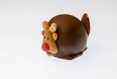 Rudolph czekolada fotografia royalty free