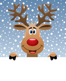 Rudolph deer holding blank paper Stock Photos