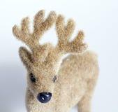 Rudolph el reno Fotos de archivo libres de regalías