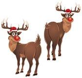 Rudolph la situación del reno Fotografía de archivo libre de regalías