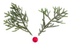 Rudolph The Red Nose Reindeer Stock Photography