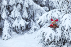 Rudolph the Red-nosed Reindeer Stock Photos