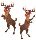 Rudolph The Reindeer Dancing. Parting & enjoying on Christmas, wearing a Santa hat and he is looking very as Christmas is coming. There are two poses of him Stock Image
