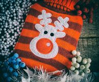 Rudolph renifer fotografia stock