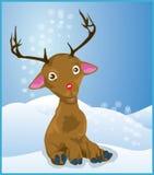 Rudolph reniferowy nos czerwony Fotografia Royalty Free