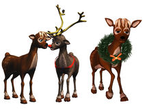 Rudolph and rhonda Royalty Free Stock Images