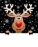 Rudolph-Rotwild, die unbelegtes Papier für Ihren Text anhalten Lizenzfreie Stockfotos