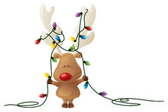 Rudolph's Tricky Task Royalty Free Stock Images