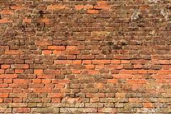 Rudopomarańczowy ściana z cegieł 3 Fotografia Royalty Free