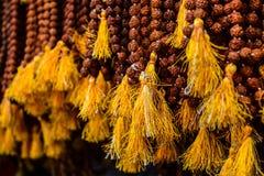 Rudraksha la perla santa dell'India fotografia stock