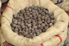 Rudraksha tree fruits nuts in sack, Asia market, India Royalty Free Stock Photo