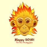 Rudzielec ogienia małpa jako Nowy 2016 rok symbol Zdjęcie Stock