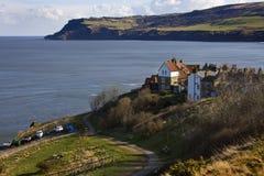 Rudzików kapiszonów zatoka Brytyjskie wyspy - Yorkshire wybrzeże - obrazy royalty free