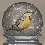 Rudzik w śnieżnej kuli ziemskiej obraz stock