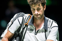 Rudzika Haase ATP Światowa wycieczka turysyczna Obrazy Royalty Free