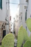 Rue étroite dans Ostuni, Puglia, Italie photo stock
