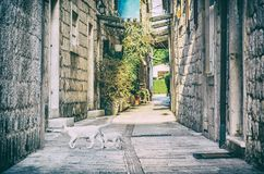 Rue étroite dans Trogir historique, Croatie, filtre analogue Photos stock