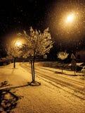 Rue avec des arbres, des lumières et des flocons de neige Images libres de droits