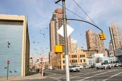 Rue avec le feu de signalisation dans Midtown Manhattan Photos libres de droits