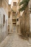 Rue avec les portes en bois et buisson dans Mahdia tunisia Image stock