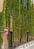 Rue caractéristique à Rome Photos libres de droits
