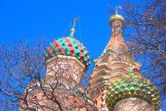 Rue Cathédrale de basilic, grand dos rouge, Moscou, Russie Photos libres de droits