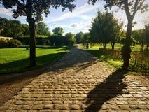 Rue Cobblestoned en parc à Paris Photos libres de droits
