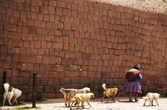 Rue dans la ville péruvienne photo stock