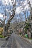Rue dans Machico sur la Madère Photographie stock libre de droits