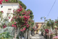 Rue dans Ravello, côte d'Amalfi, Italie, Images libres de droits