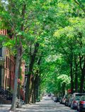 Rue de Brooklyn Images stock
