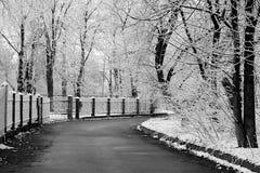 Rue de l'hiver Photos libres de droits